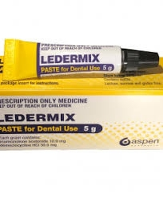Ozdent Ledermix Paste  *SPECIAL RATES*
